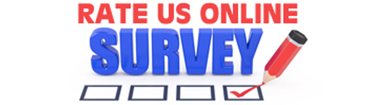 on line survey