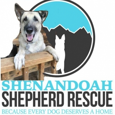 Shenandoah Shepherd Rescue Adoption Event