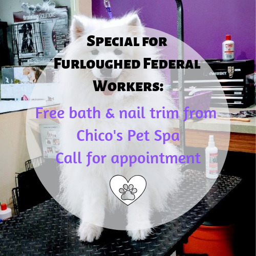 Special for Furloughed Workers:Free Bath/Nail Trim