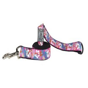 RC Pet Leashes