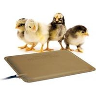 Thermo-Peep Heated Pad