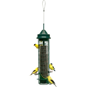 Brome Bird Care Squirrel Buster Finch