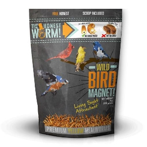 The Honest Worm! Wild Bird Magnet