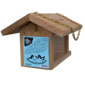 C&S Bluebird Feeder