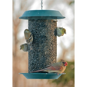 Woodlink Plastic Magnum Sunflower Screen Feeder