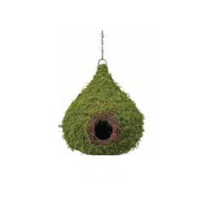 Galapagos® Mossy Hide Raindrop With Chain