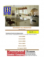Wilsonart Fall Promotion - Counter Tops