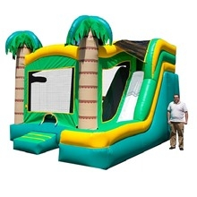 Inflatable - Bouncer combo large - Palm Tree