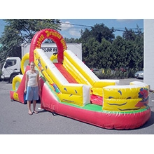 Inflatable - Slide, Small