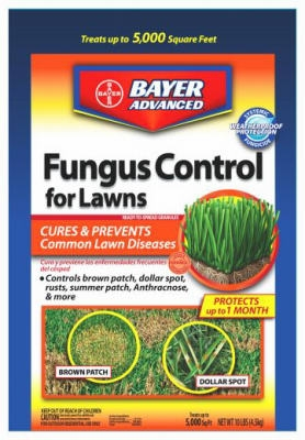 Advanced Fungus Control For Lawns, 10-Lbs.