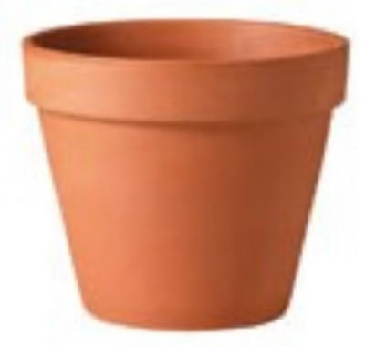 Terra Cotta Clay Pot, Standard, 4-In.