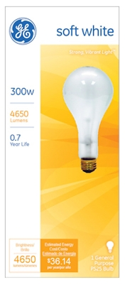 300-Watt Clear Light Bulb