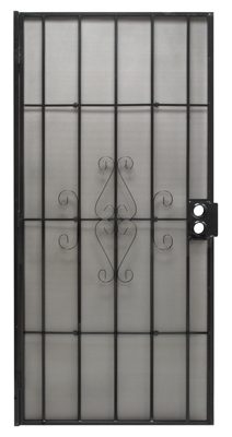Regal Series Security Door, Black Steel, 38.5 x 81.5-In.