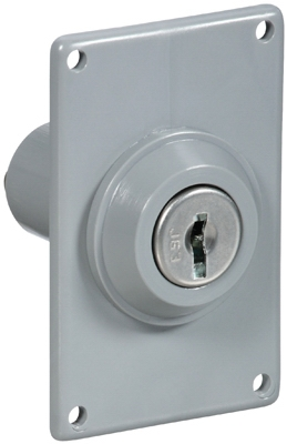 GRY Elec Key Switch