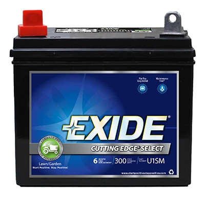 Cutting Edge Lawn Tractor Battery, 12-Volt