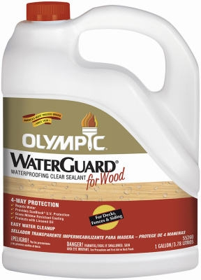 1-Gallon Waterguard Waterproofing Clear Sealant