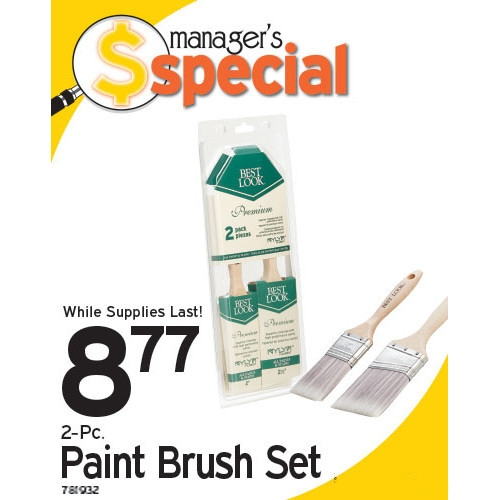 Manager's Special: Paint Brush Set