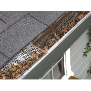 Gutter and Roof Protection