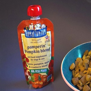 Nummy Tum Tum™ Pamperin' Pumpkin