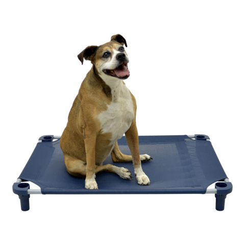 4Legs4Pets Premium Solid Color Cot