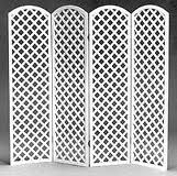 Lattice screen 4 panel
