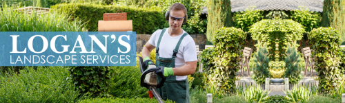 Check Out Our Landscape Services.