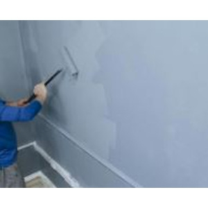 PPG Interior and Exterior Paints