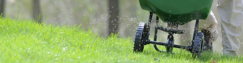 Re-Seed & Feed Your Lawn!