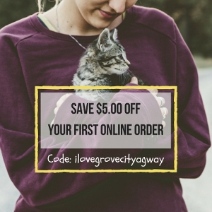 Shop Online With Us & Save!