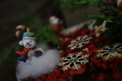 Holiday Fairy Garden Workshop for Kids