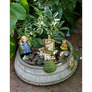 Exceptionnel September Fairy Garden Workshop