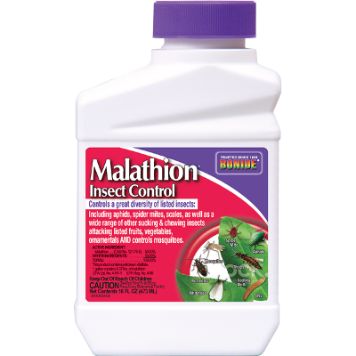 Bonide Malathion Concentrate Insect Control, 16 oz.