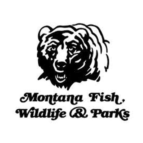Fishing & Hunting Licenses