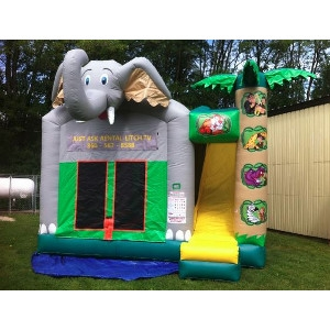 4 in 1 Jungle Inflatable