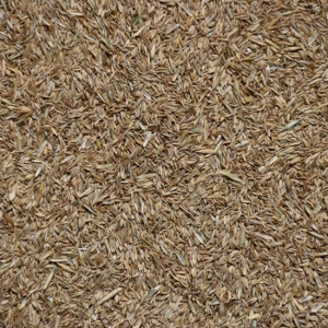 All Purpose Grass Seed Mix