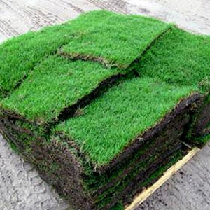 Sod Soil Amp Sand Mrt Lawn And Garden Center Venice Fl