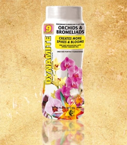 Dynamite Complete Orchid & Bromeliad Plant Food, 10-10-17