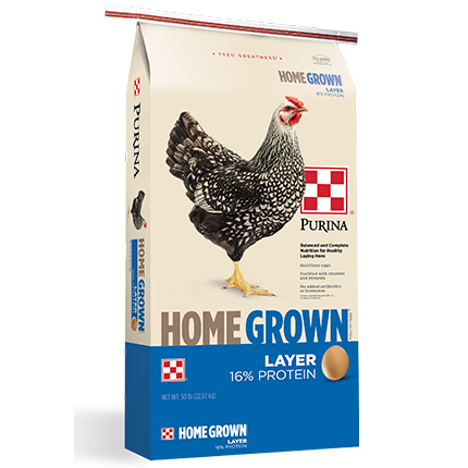Purina 50# Bags Homegrown Layer Pellets 2 for $25