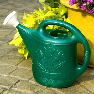 2 Gallon Green Watering Can