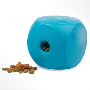 Buster Food Cube Activity Toy