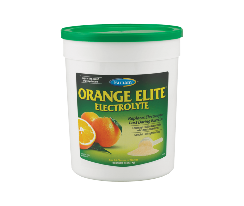 Orange Elite Electrolyte 5 lb.